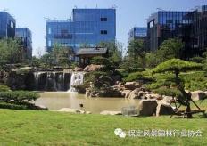 同方智慧谷国际企业总部绿化工程