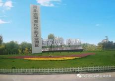 河北安国现代中药工业园区重要节点绿化改造项目一标段